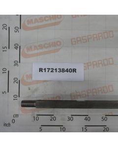 Maschio Gaspardo AX BATERIE L1613 C45 BON R17213840R